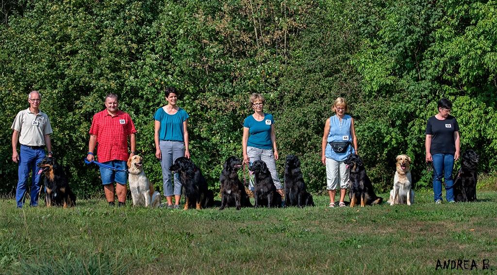 von links: Andreas mit Kero, Thom mit Jarina, Katrin mit Kimi, Annette mit Biloxi, Kalema und Coruña, Bea mit Kayla, Jenga und Claudia mit Juma.